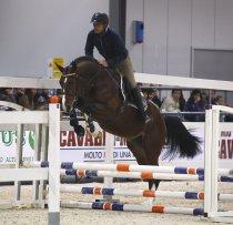 Ulisse cavalli a confronto 2010